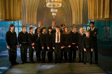 Harry Potter and the Order of Teen Angst
