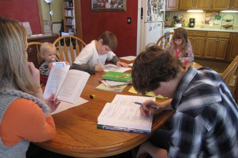 The Homeschooling Dilemma