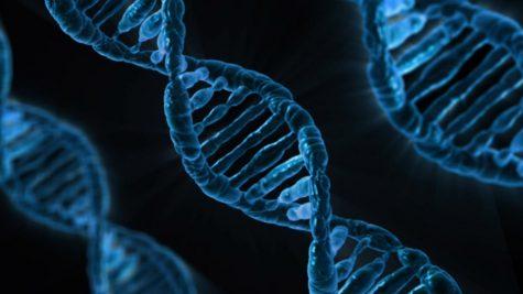 Microbiology Biology Gene Dna Analysis Medicine