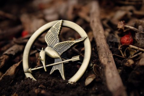 The famous mocking jay pin from The Hunger Games dropped in nature.