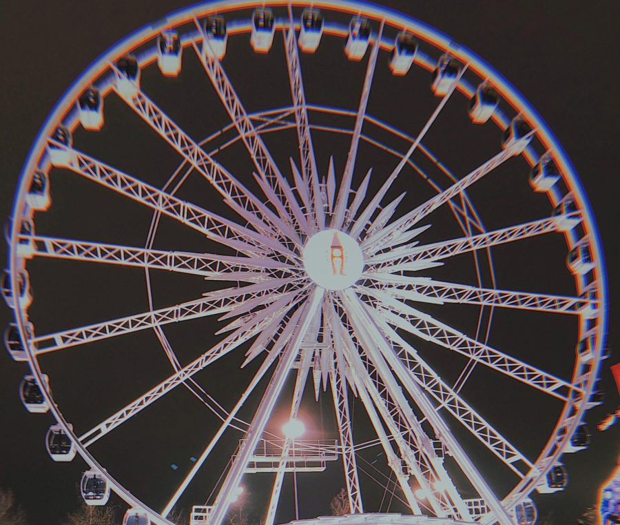 The Ferris wheel at the Houston Rodeo.